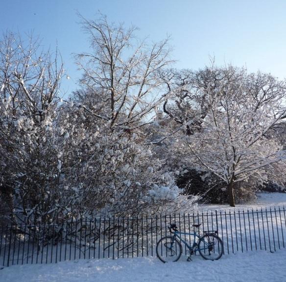 snow bike greenwich